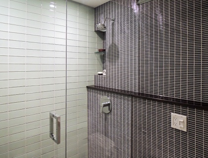 Custom frameless glass shower enclosure.